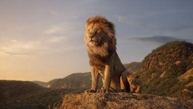 Photo of شیر شاه ۲۰۱۹ از دید سایت های معتبر دنیا