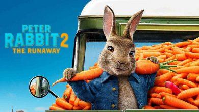 Photo of ویروس کرونا باعث عقب افتادن اکران فیلم Peter Rabbit 2: The Runaway شد