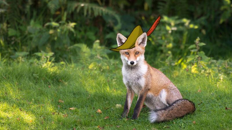 بازسازی لایو اکشن Robin Hood